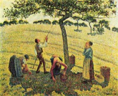 "Камиль Писсарро ""Сбор яблок в Эраньи."""